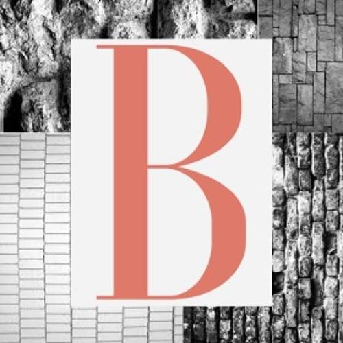 Bricoleur Social's avatar