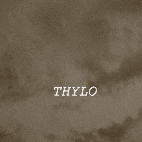 Thylo's avatar
