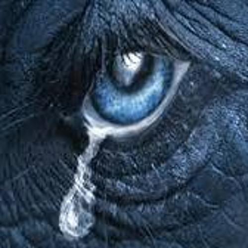 Crying Elephant's avatar