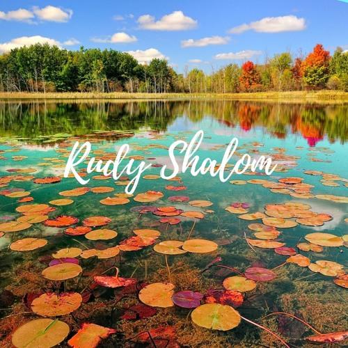 Rudy Shalom's avatar