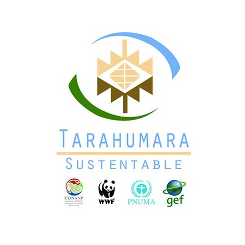 Proyecto GEF Tarahumara Sustentable's avatar