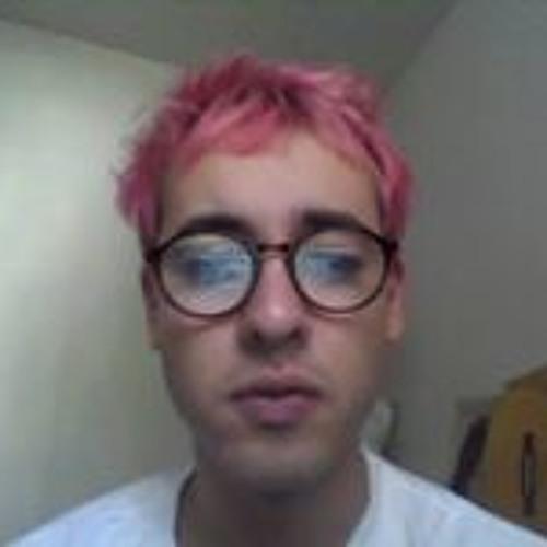 Luka Brandi's avatar
