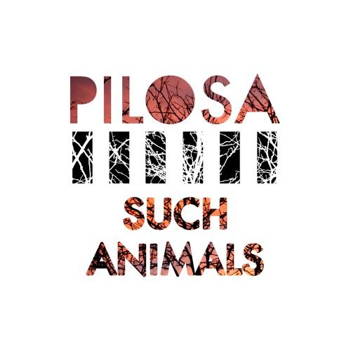 PILOSA's avatar
