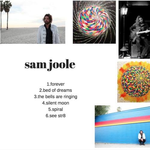 Sam Joole's avatar
