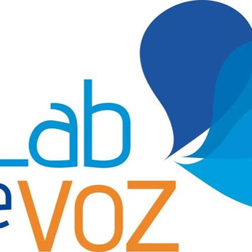 LABDEVOZ Chile's avatar