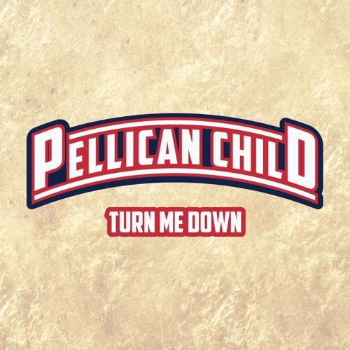 Pellican Child's avatar