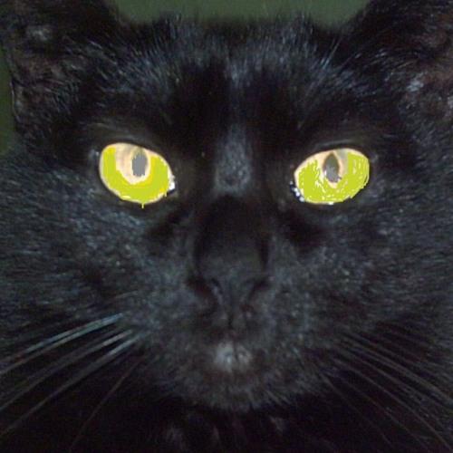 nitetripper's avatar
