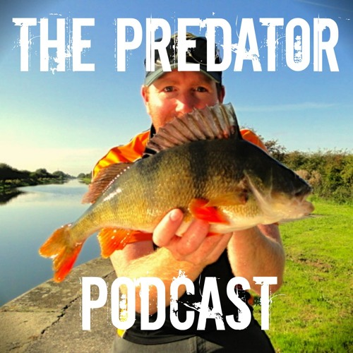 The Predator Podcast's avatar