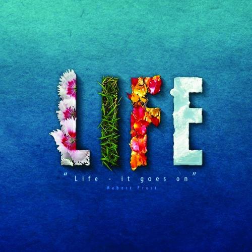 MUSIC & LIFE's avatar