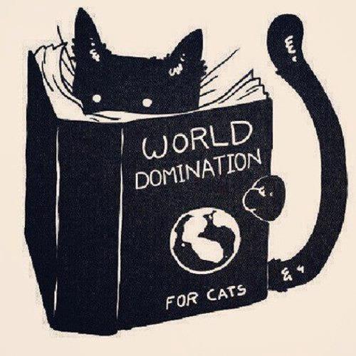 Strat-Cat's avatar