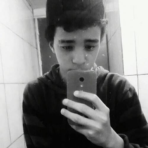 Samuel FS's avatar