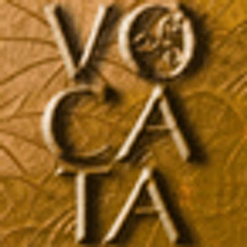 Vocata's avatar