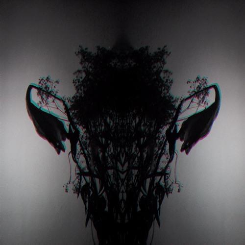 Vitrea's avatar