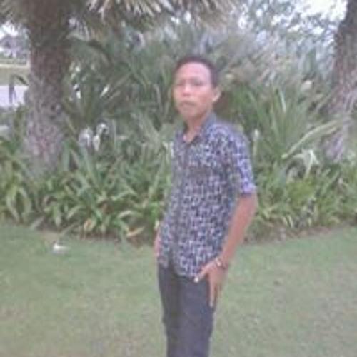 Sapoetra Lamtim Lamtim's avatar