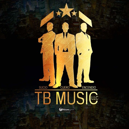 TB Music LLC's avatar