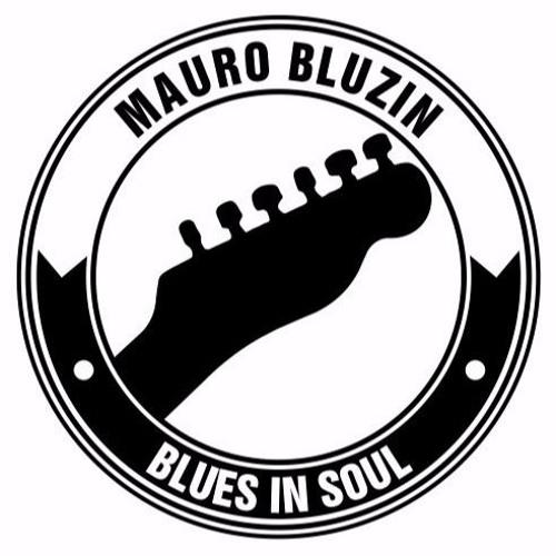 Mauro Bluzin's avatar