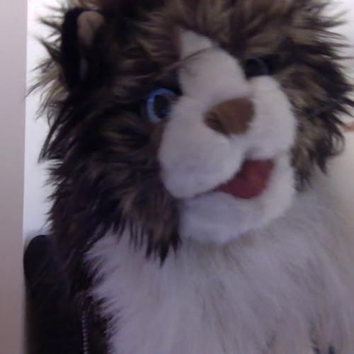 Piggy the Comedy Cat's avatar