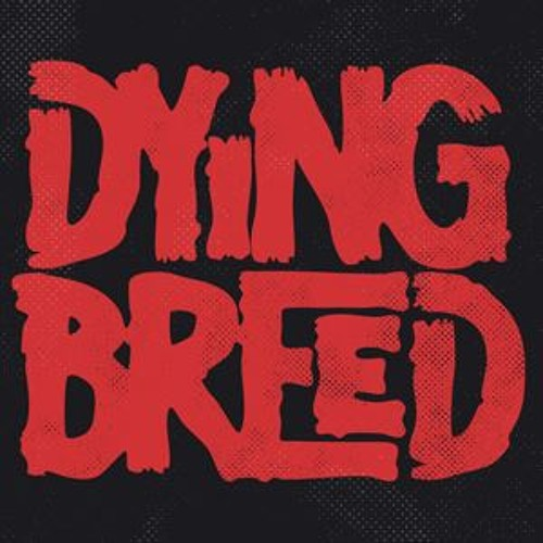 DyingBreed Music Group's avatar