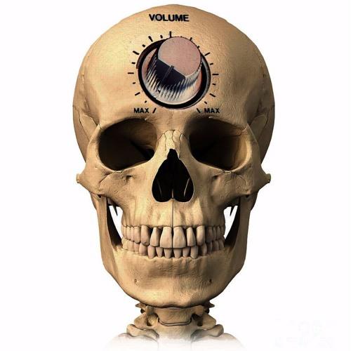 Nucleus Accumbens (NAcc)'s avatar