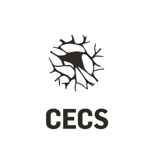 CECS - UMinho's avatar