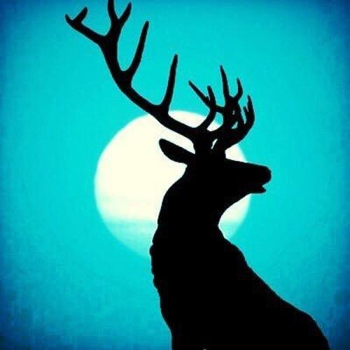 冷えた鹿(hieta shika)'s avatar