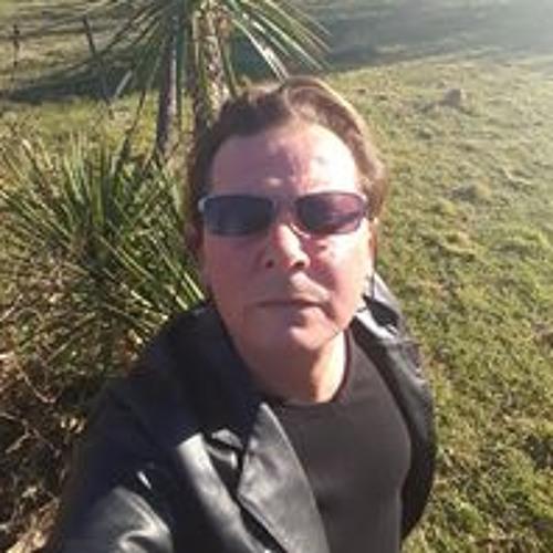 Laurent Wman Arts's avatar