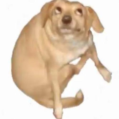 WooLeh's avatar
