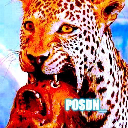 posdn_'s avatar