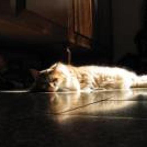 Thisismycatspage's avatar