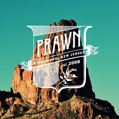 Prawn's avatar