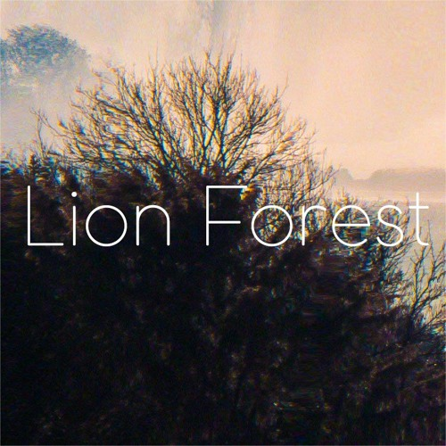 Lion Forest's avatar