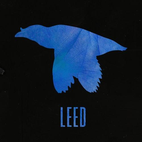 LEED's avatar