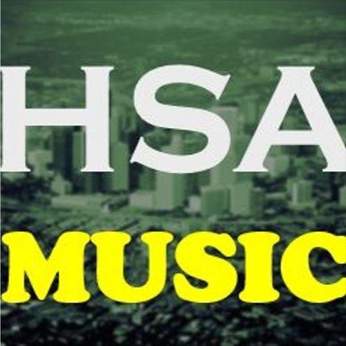 Houston Songwriters Association's avatar