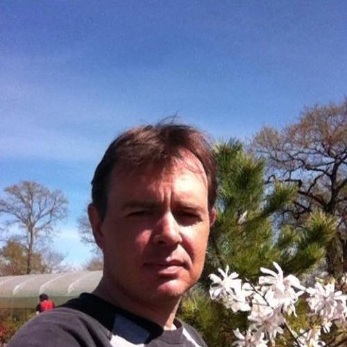 Mickael David's avatar
