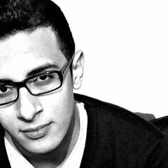 Ahmed Adil A. Elhakim