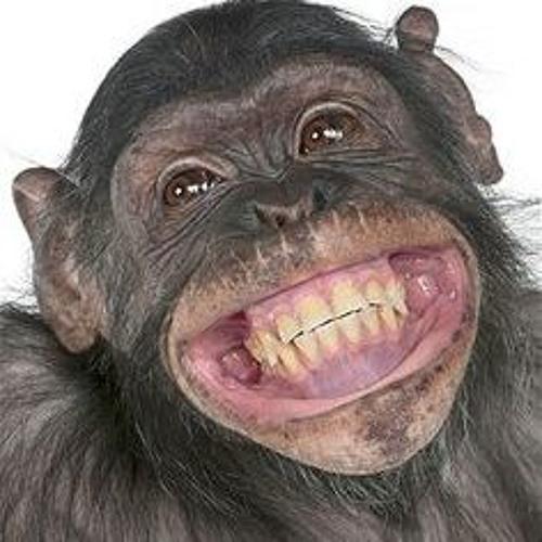 Turnipface7's avatar