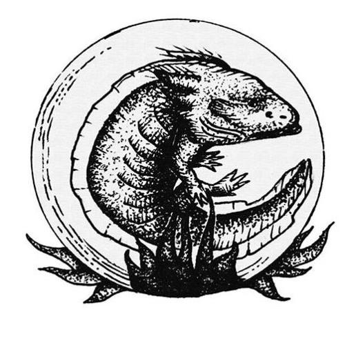 La Rabia del Axolotl's avatar
