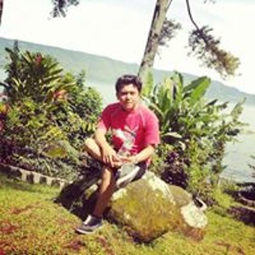 nicolas_manru's avatar