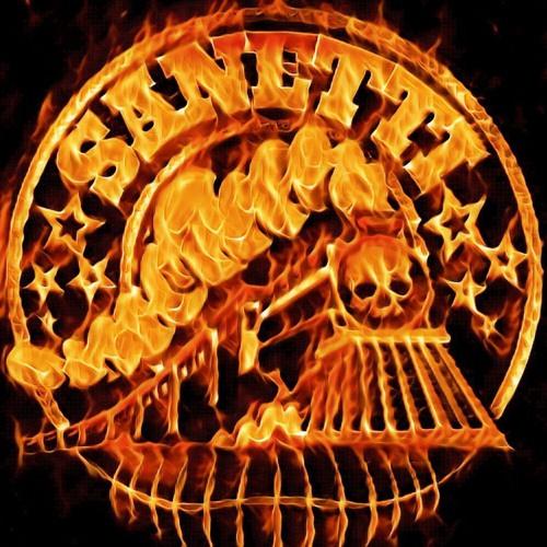 Sanetti's avatar