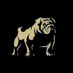 Bulldog Beats