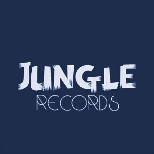 JUNGLE Records Remixes's avatar