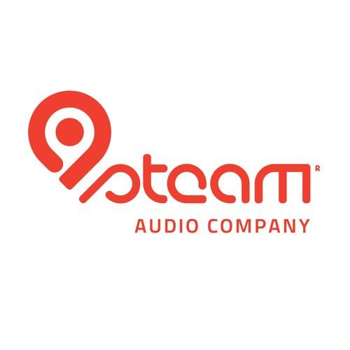 steam audio company's avatar