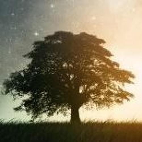 보름찬:달's avatar