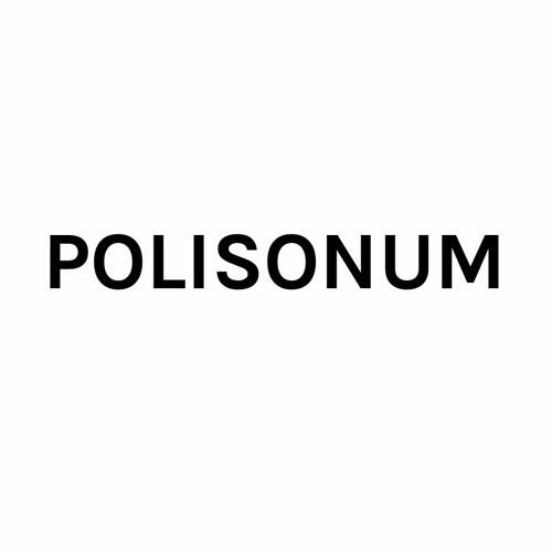 Polisonum's avatar