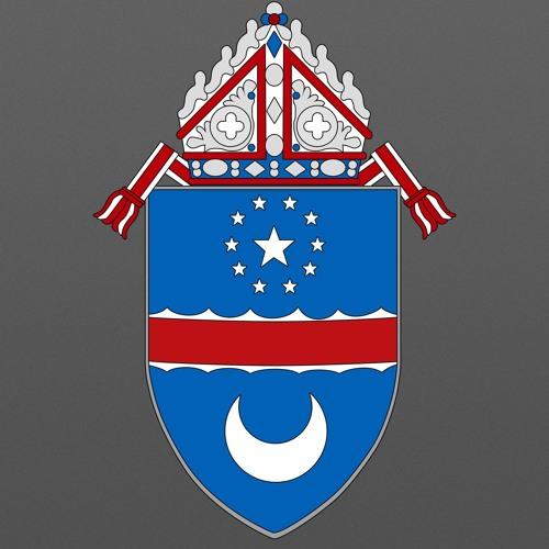 Diocese of Arlington's avatar