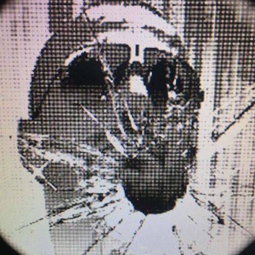 burcin kücük's avatar