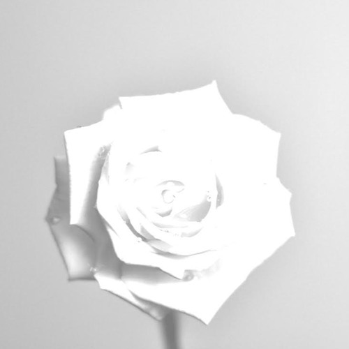 Raeko's avatar