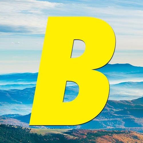 BLUSTER MUSIC's avatar
