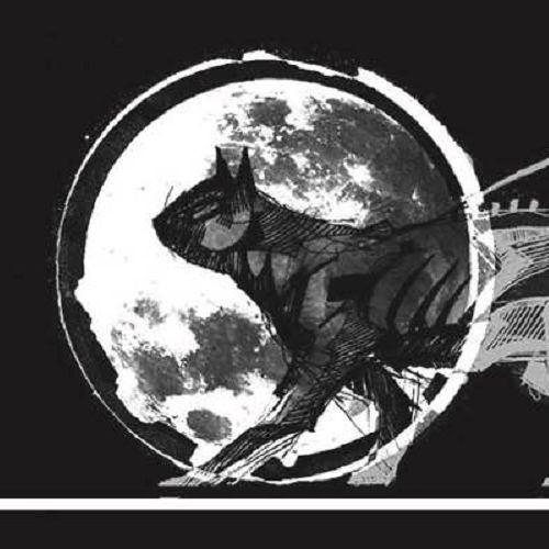 El Gat Negre's avatar