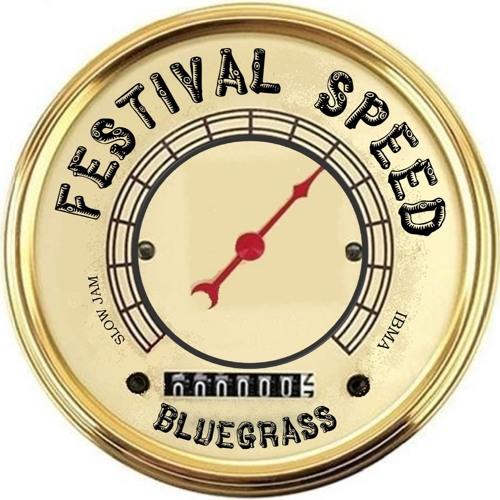Festival Speed's avatar